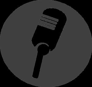 best condenser studio microphone under 100