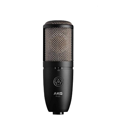 Best Large Diaphragm Condenser Studio Microphones